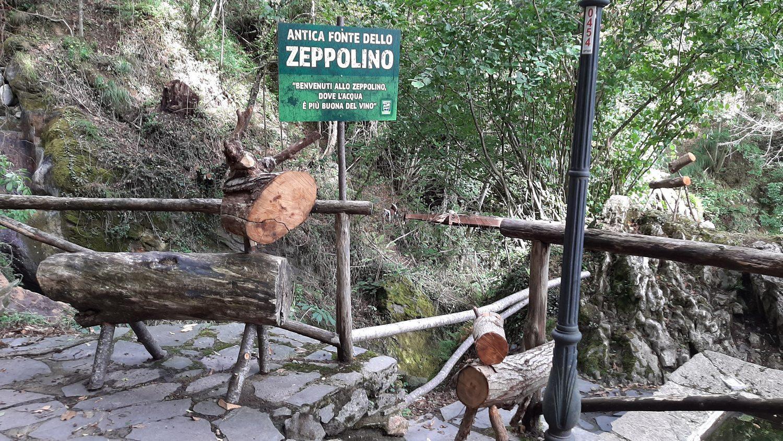 Lo Zoo Park a Levigliani: un piccolo angolo di paradiso