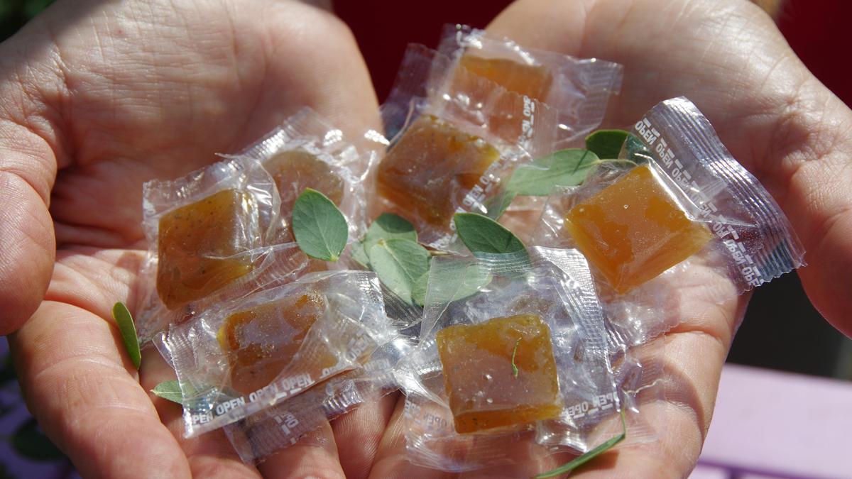 A Massarosa nascono i prodotti biologici per i bambini firmati Oligea