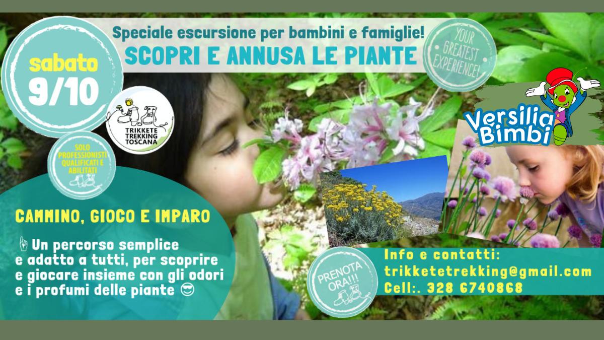 """""""Scopri e Annusa le Piante"""": una camminata nella natura per famiglie con i giochi in legno"""