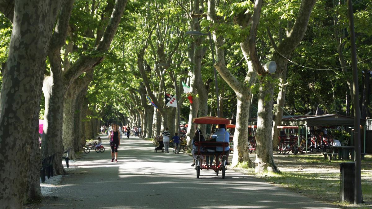 Divertimento e relax al Parco Pineta di Ponente di Viareggio