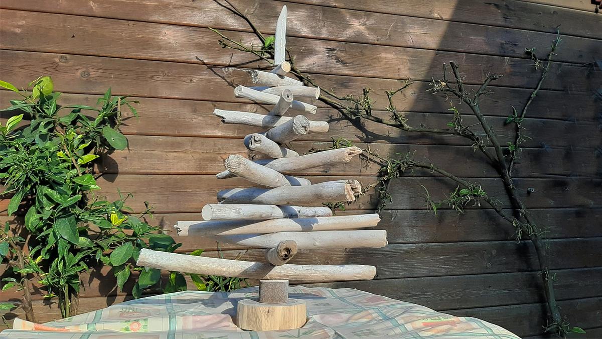 Alberello con i tronchi